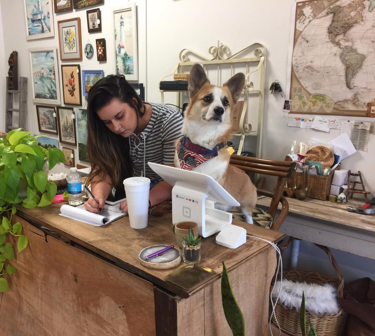 Social Media Boosts Des Moines Home D Cor Store